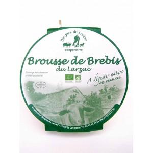 brousse-brebis