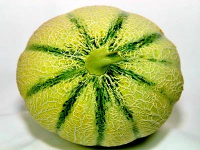 Comment choisir un melon d espagne - Comment faire murir un melon ...