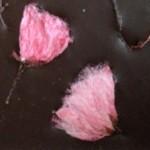 Chocolat-fleur-cerisier