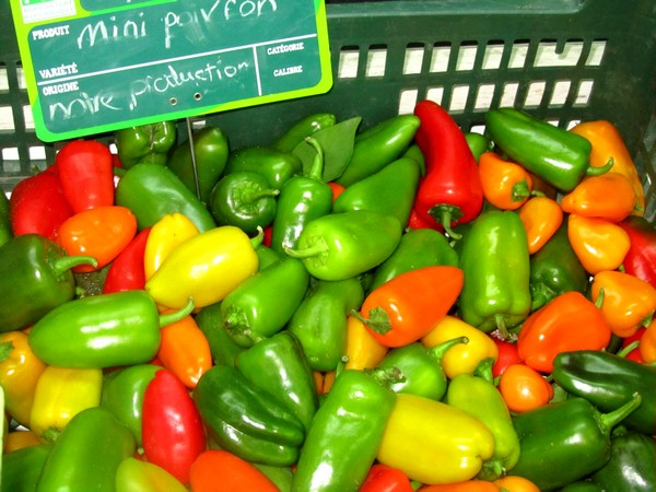poivrons-piments-basque