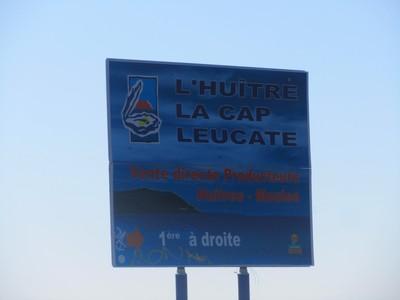 leucate-cap-huitre
