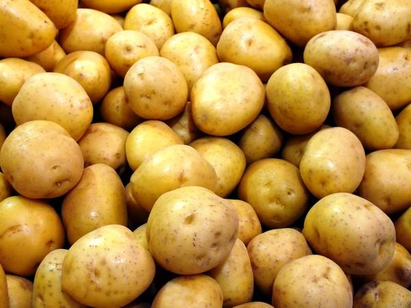 eplucher-pommes-terre