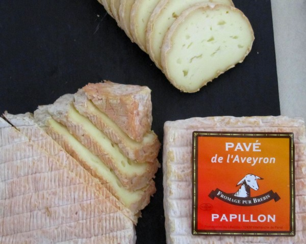papillon-rondin-pave