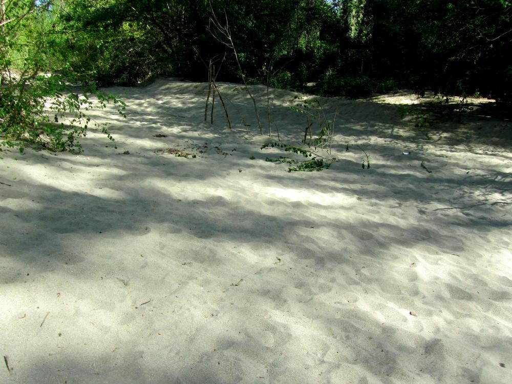 blagnac-plages