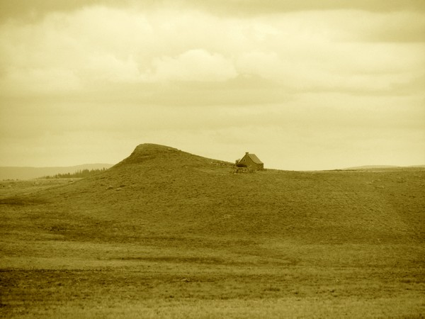 aubrac-paysage-plateau