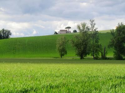 Tarn-paysage
