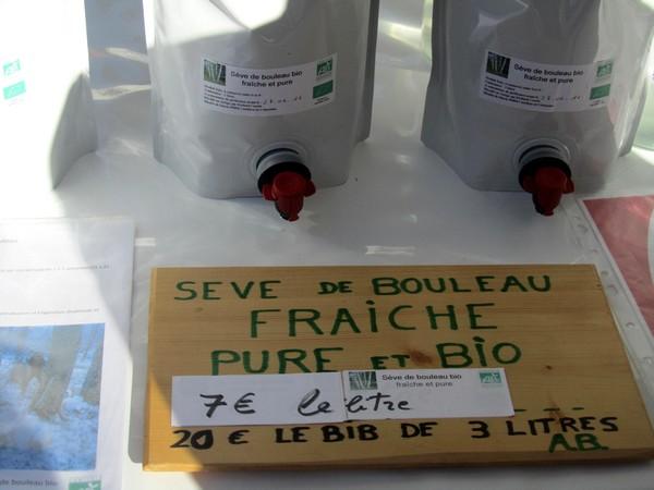 seve-bouleau-ariege